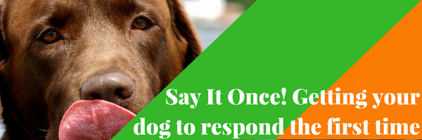 Say It Once! Getting your dog to respond the first time